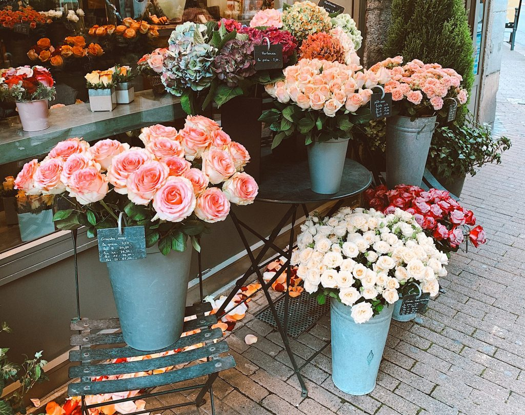 assorted colors and varieties of flowers