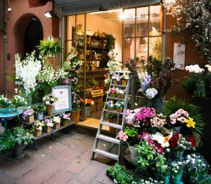 ladder beside flowers